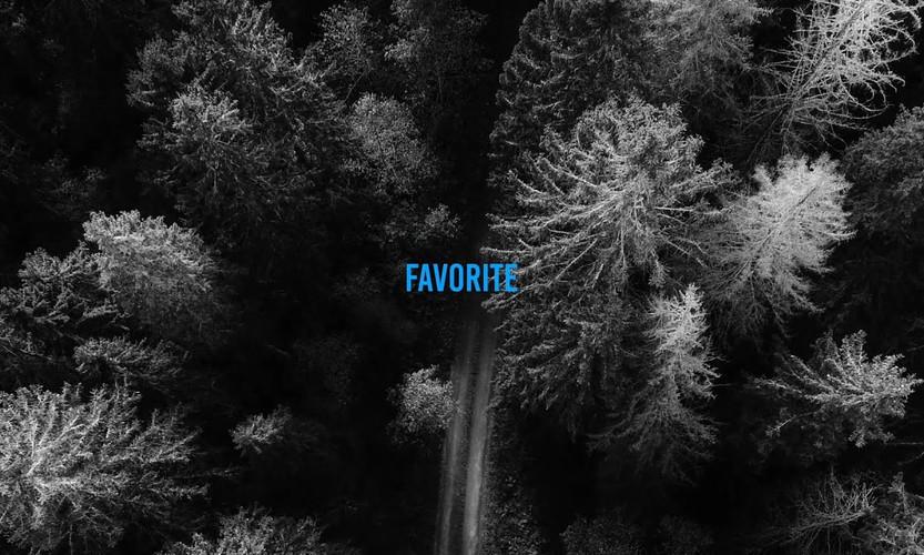 그리즐리(Grizzly) - Favorite (feat. punchnello, SOLE) (Official Lyric Video)