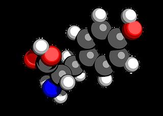 tyrosine.png
