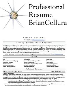 Brian Cellura Resume
