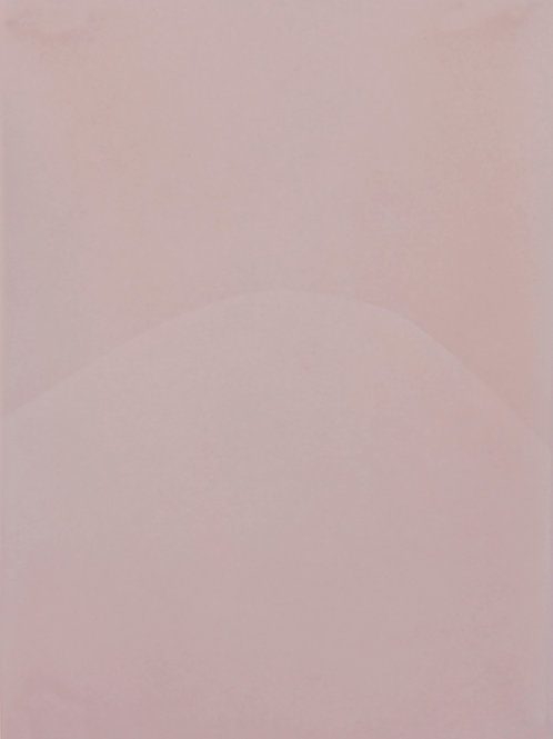 El borde en el paisaje (5), de Daniela Torres