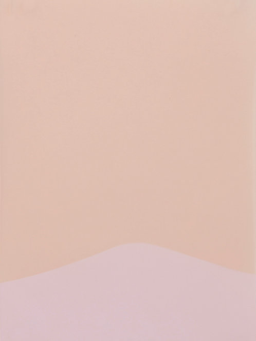 El borde en el paisaje (8), de Daniela Torres