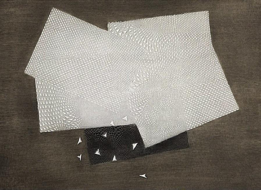 ARTHUR LUIZ PIZA - Gravura em metal. Ano 1978. Tamanho 60 x 75cm. Ed. 56 de 99. R$ 10.000,00