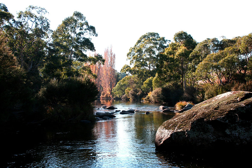 Thredbo River.JPG