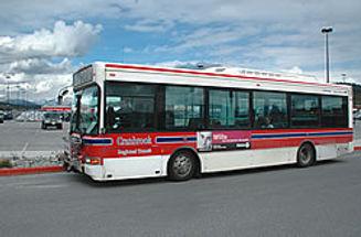 citybus250.jpg