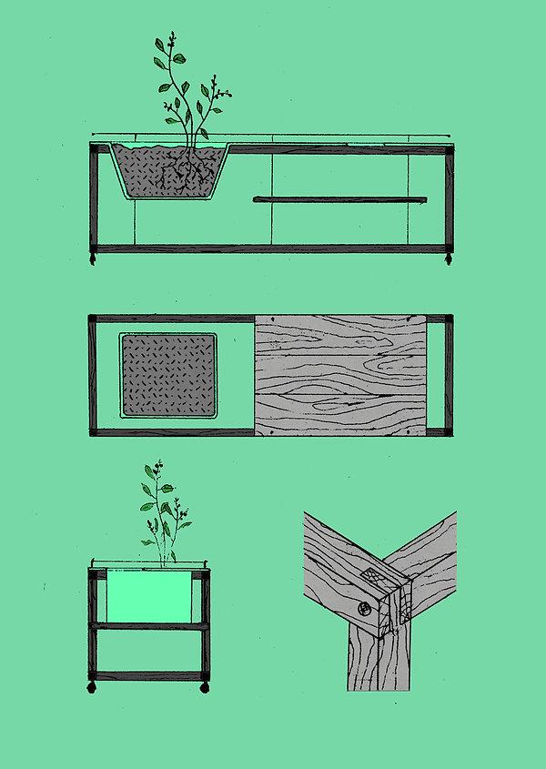 FLEUR_dessins_planche 2.jpg