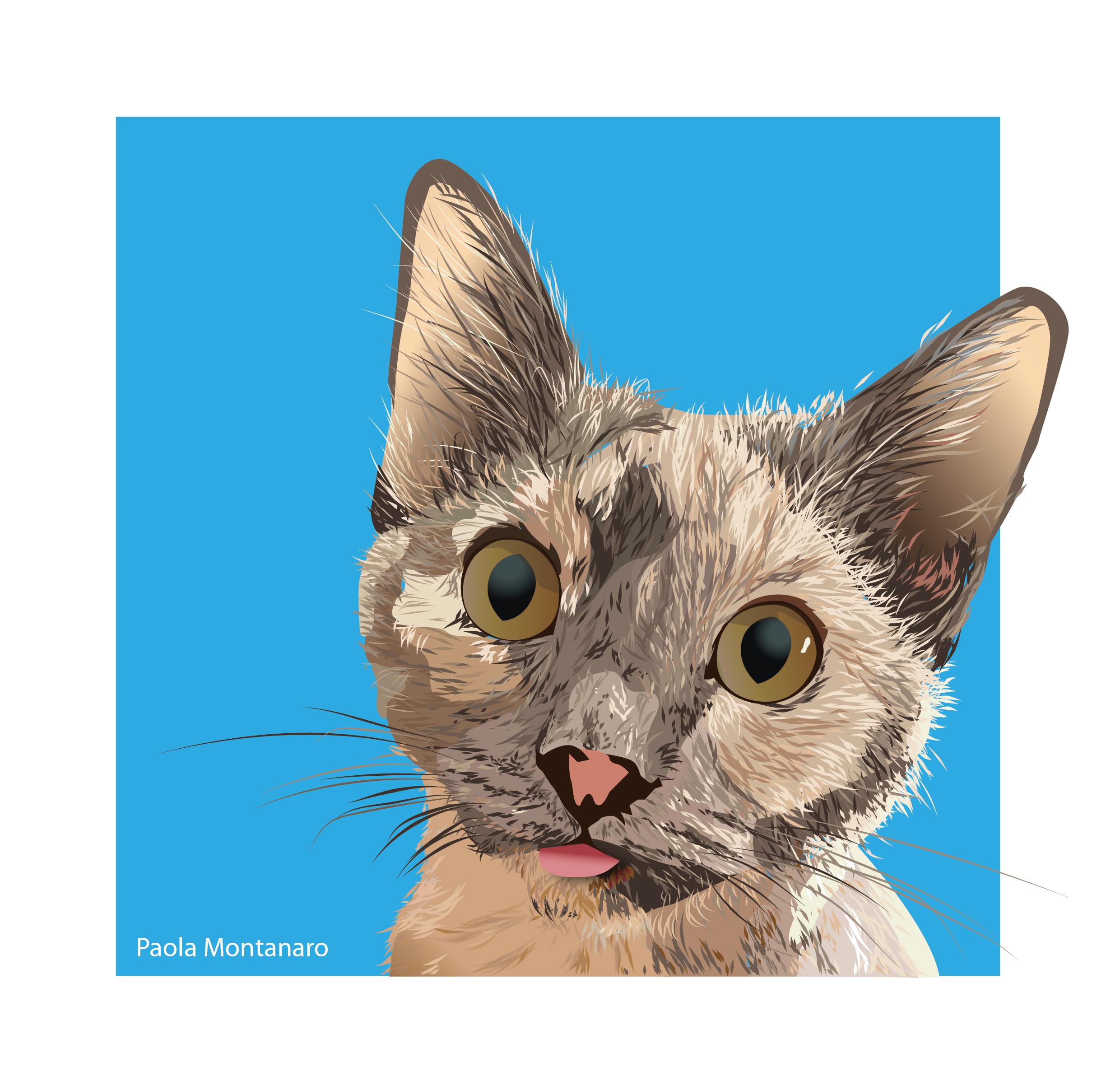 Astrid Cat