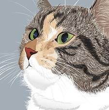 Cat Immagine vettoriale - Vector Illustration