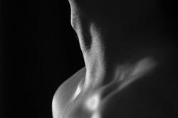 bodies web-