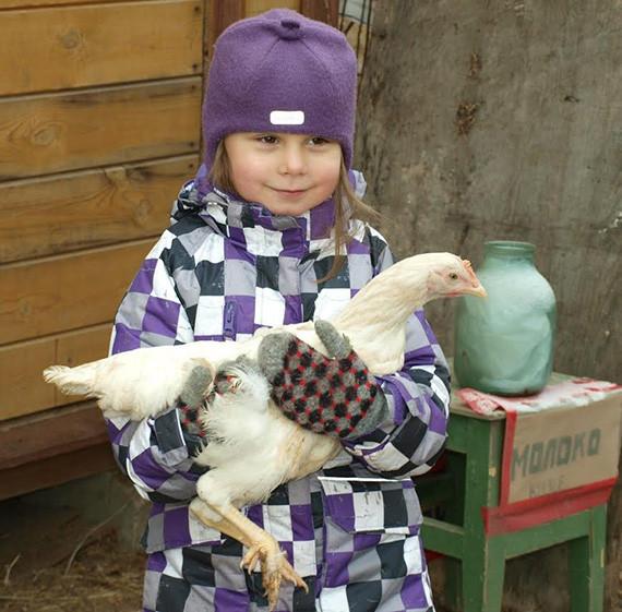 Белая курица