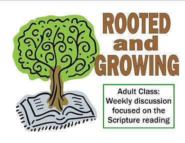 Adult Study 9am Sunday.jpg