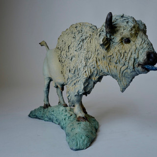 Bold Bison Bull 2 of 7