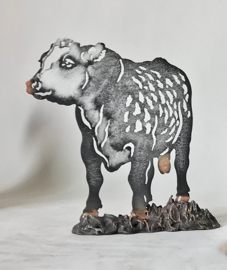 Mira Set - Cow #22 - Bull