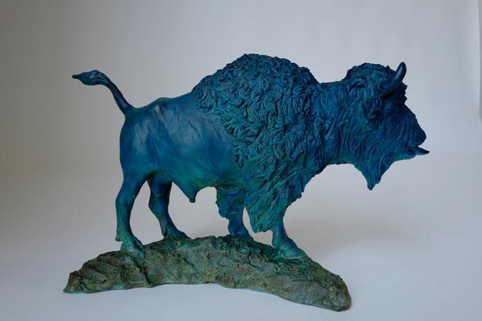 Bold Bison Bull