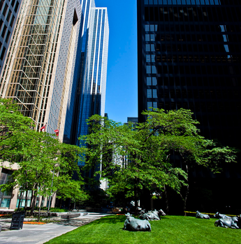 The Pasture - Toronto