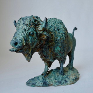 Bold Bison Bull 7 of 9