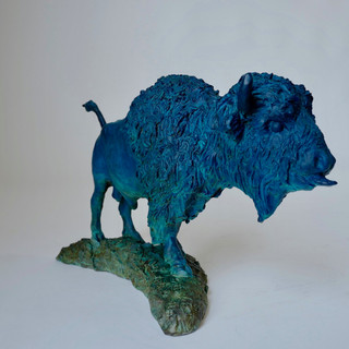 Bold Bison Bull 6 of 9