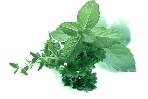 herbs-3606074.jpg