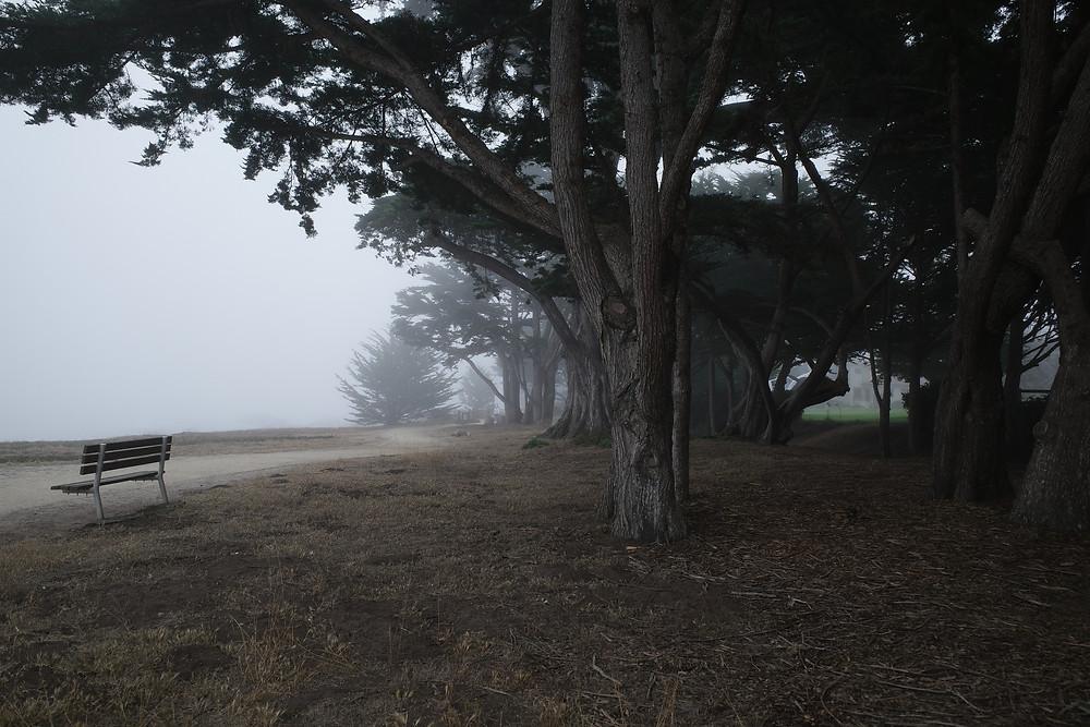 Monterey, Ricoh GR3