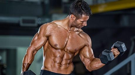muscle up.jpg