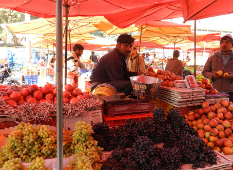 Best Marketing Channels for Organic Produce in India
