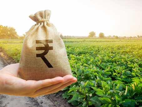New Business Opportunities for Investors in Agriculture in India