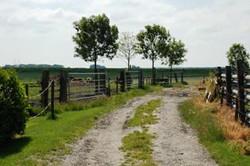 boerderij11.JPG