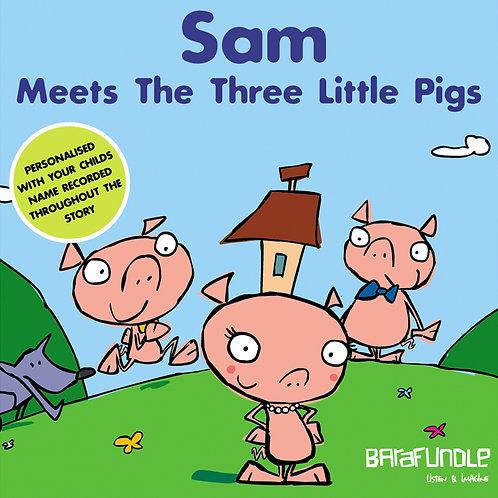 Sam Meets The Three Littls Pigs - Download