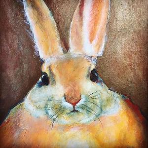 urban-rabbit.jpg
