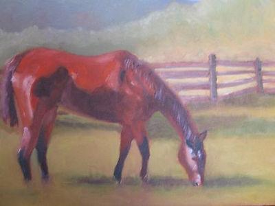 503_Greer_Horse_11x14_oil.jpg