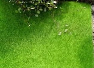 Fairy Garden Grass Mat