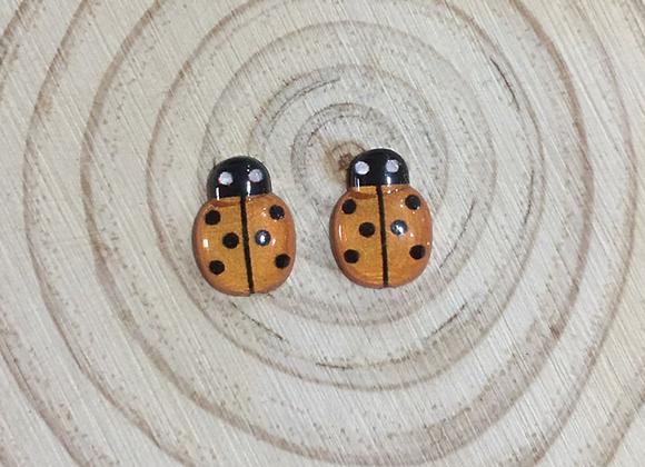 Ladybug stud earrings.