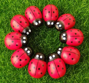 Pack of 10 Wooden Ladybugs