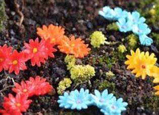 Fairy Garden set of 3 random flowers