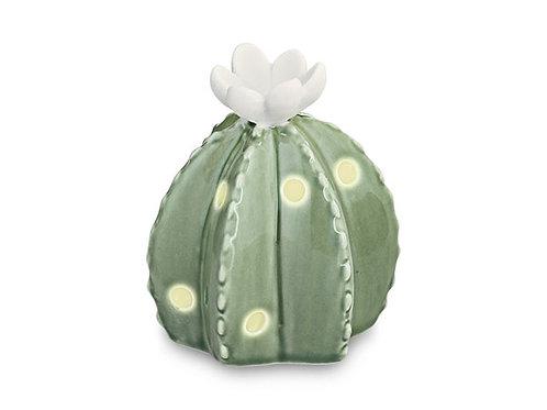 cactus piccolo fiore bianco led