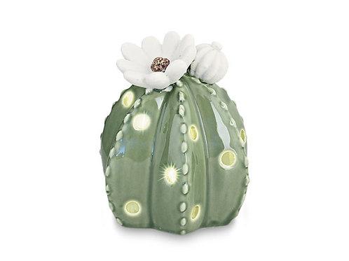 cactus fiori bianchi led