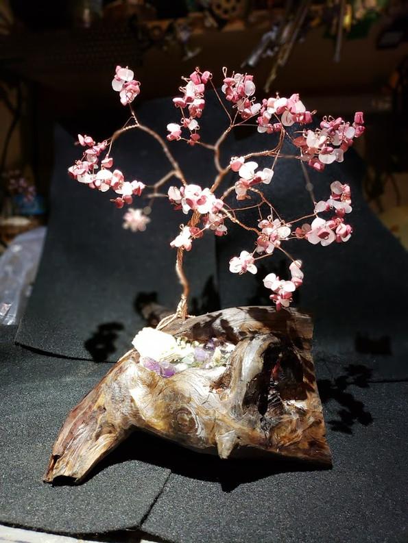 Driftwood (dark) with Spring Tree