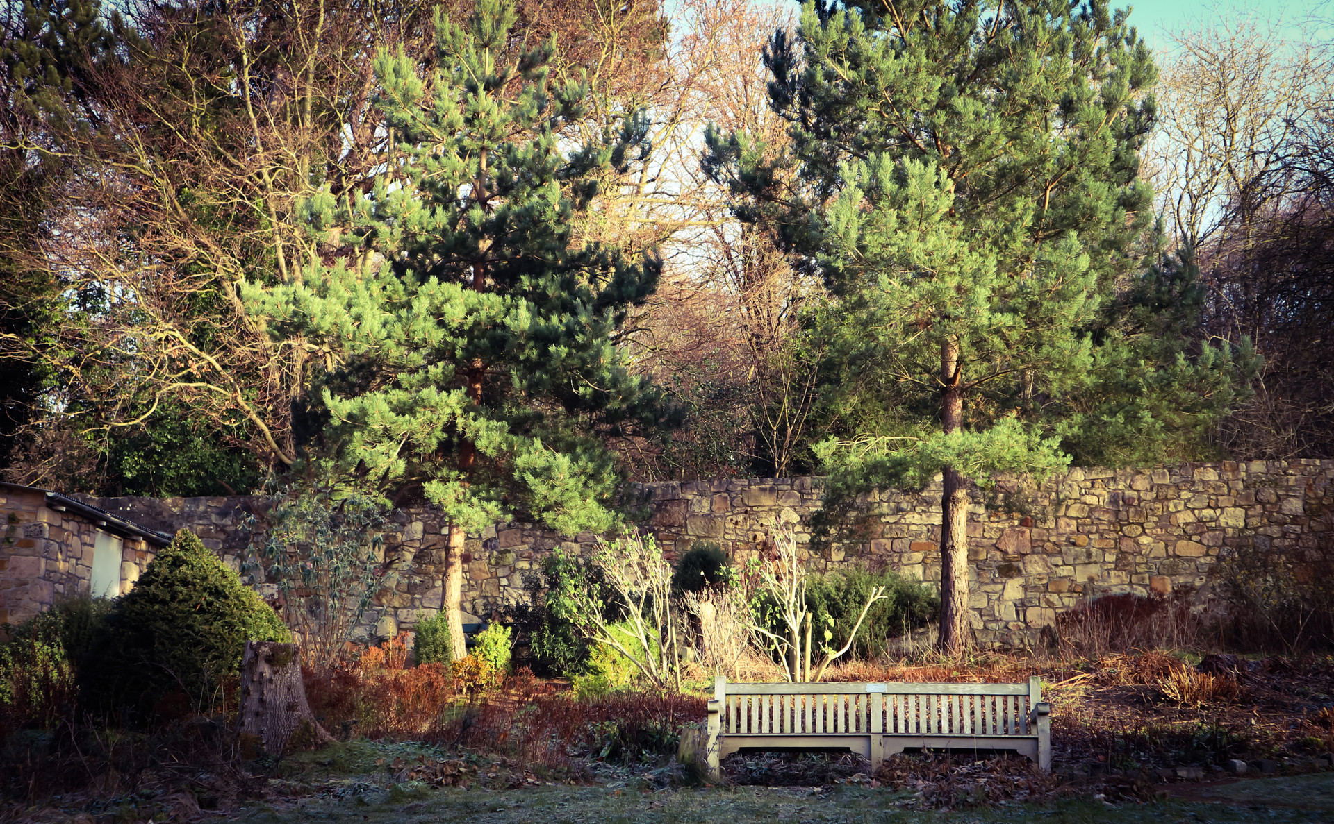 Walled_Garden_Bench.jpg