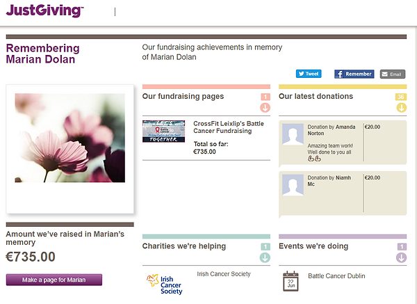 ScreenShot of JustGiving Page for BAttle