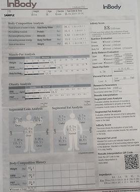 Sample In Body Scan Results.jpg