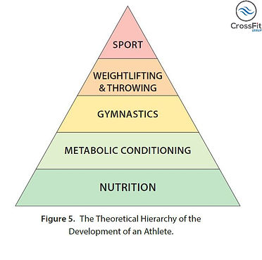 The Theoretical Hierarchy of the Develop