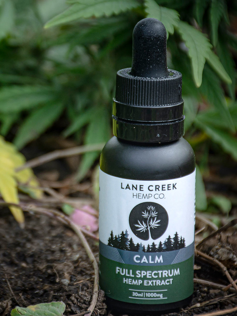 Lane Creek Branding