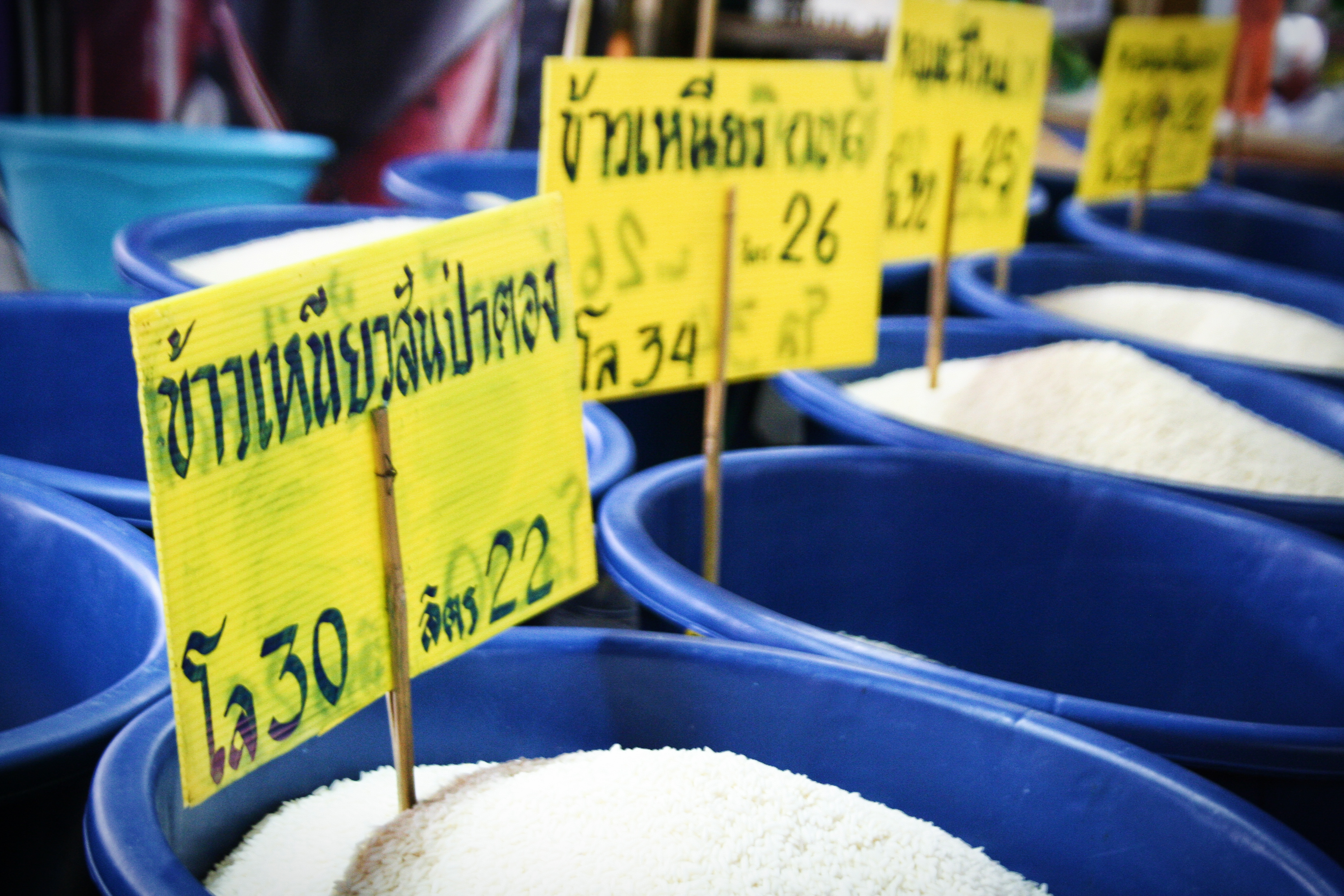 thai14