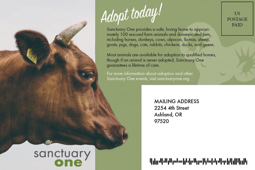 animal sanctuary nonprofit direct mail marketing design