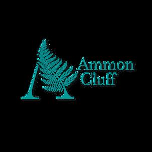turquoise blue fern botanical modern logo