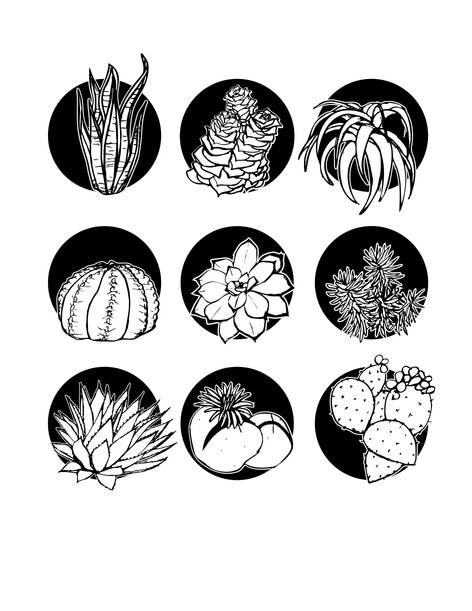 black and white succulent graphic design icon set