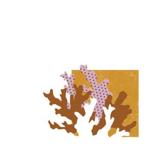 coral paper cutout graphic art design