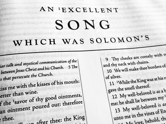 Beza's Eight Principles for the True Exposition of the Song of Solomon.