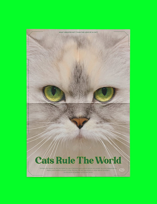 CATS RULE THE WORLD POSTER Vol.1.jpg