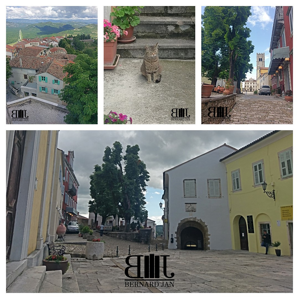 My vacation in Croatia: Motovun, June 11, 2020