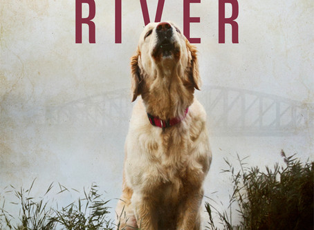 January River in The Book Designer Contest